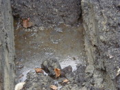 Petroleum Impacted Groundwater at Industrial Site