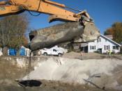 Environmental Construction Management