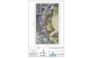 Municipal Levee Survey