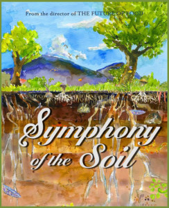Symphony of the Soil Movie Night