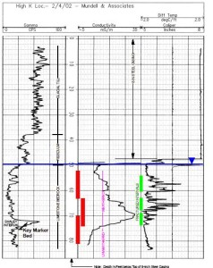 Downhole geophysical log